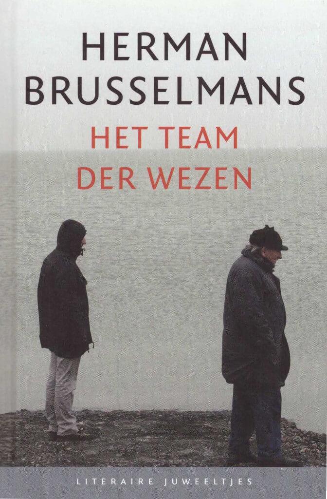 Boekomslag van Het team der wezen